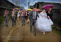 Rural Wedding